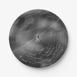 Spider and web photograph paper plates 7 inch paper plate