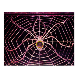SPIDER AND WEB Pink Purple Amethyst Black Postcard