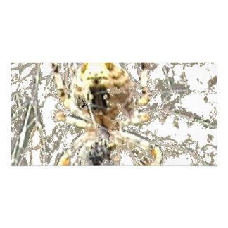 Spider Closeup Mystic Web Customised Photo Card