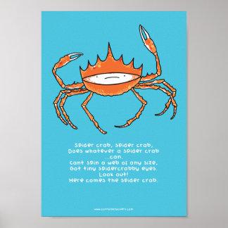 Spider crab, spider crab A4 poster