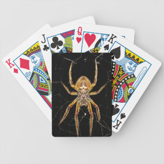 Spider design bicycle playing cards