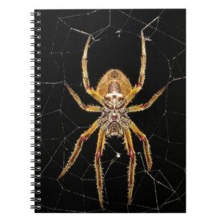 Spider design notebooks
