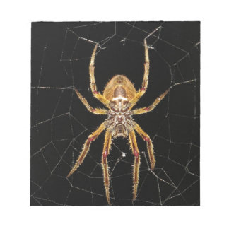 Spider design notepad