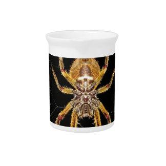 Spider design pitcher