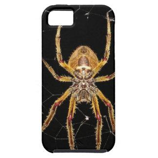 Spider design tough iPhone 5 case