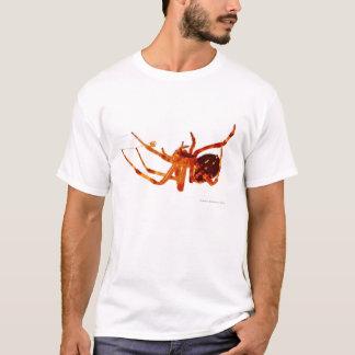 spider e T-Shirt
