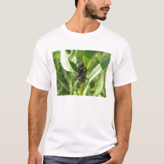 Spider gets the Wasp T-Shirt
