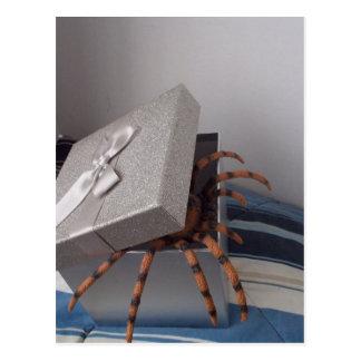 Spider in gift box postcard