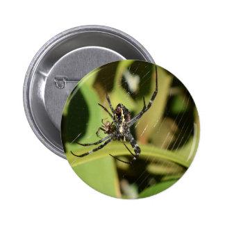 SPIDER IN WEB RURAL QUEENSLAND AUSTRALIA 6 CM ROUND BADGE