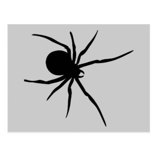 Spider Insects Spiders Arachnida Black Art Animal Postcard