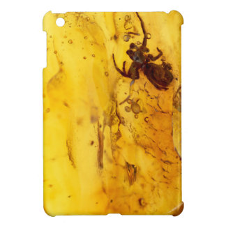 Spider inside baltic amber stone case for the iPad mini