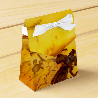 Spider inside baltic amber stone favour box