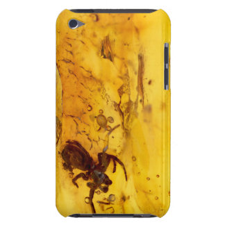 Spider inside baltic amber stone iPod touch Case-Mate case
