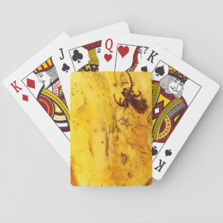 Spider inside baltic amber stone playing cards