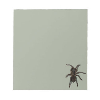 Spider lovers notepad