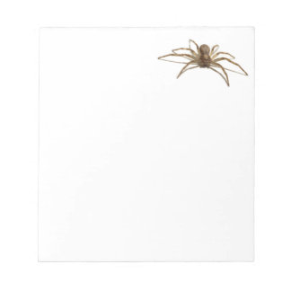 Spider Notepad