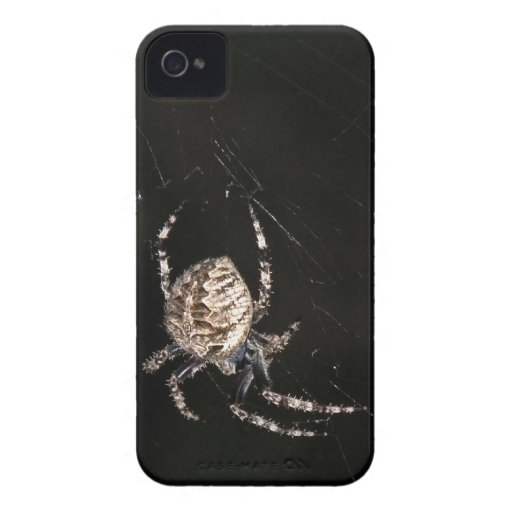 Spider on a Web at Night iPhone 4 Case-Mate Cases