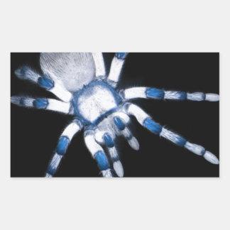 spider rectangular sticker
