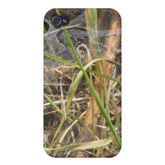 Spider Web In The Grass Case Covers For iPhone 4
