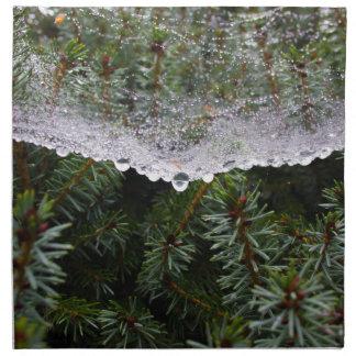 Spider web napkin
