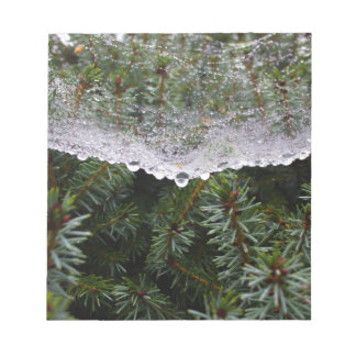 Spider web notepad