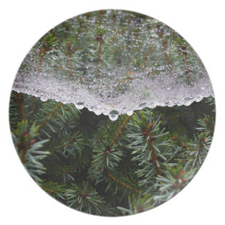 Spider web party plate