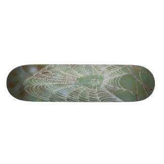 Spider Web Skatebord Skateboards
