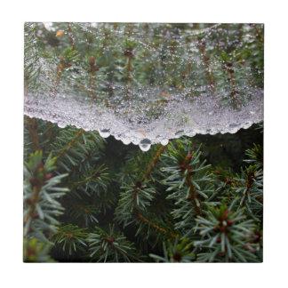 Spider web tile