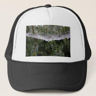 Spider web trucker hat
