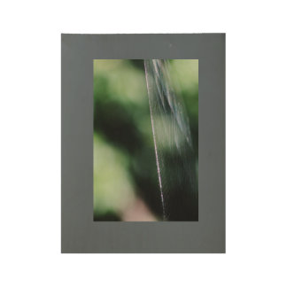 Spider web wood poster