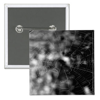 Spider webs make compelling shapes. 15 cm square badge