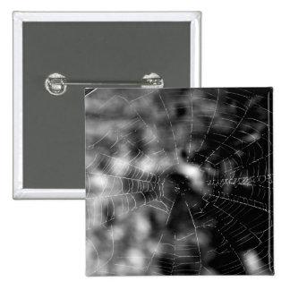 Spider webs make compelling shapes. 15 cm square badge