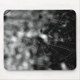 Spider webs make compelling shapes. mouse pad