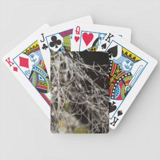 Spider webs with dew drops bicycle playing cards