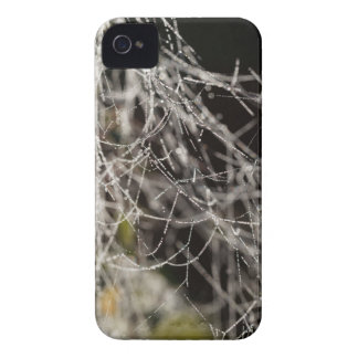 Spider webs with dew drops iPhone 4 Case-Mate case