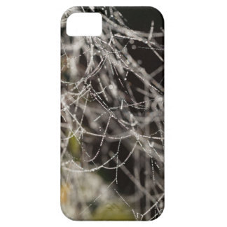 Spider webs with dew drops iPhone 5 cases