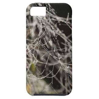 Spider webs with dew drops iPhone 5 covers