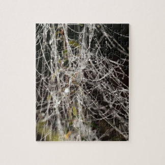 Spider webs with dew drops jigsaw puzzle