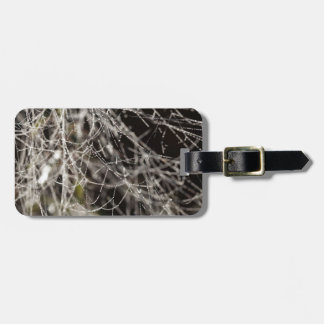Spider webs with dew drops luggage tag