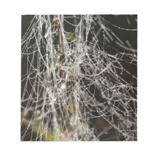 Spider webs with dew drops notepad