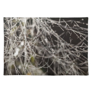 Spider webs with dew drops placemat