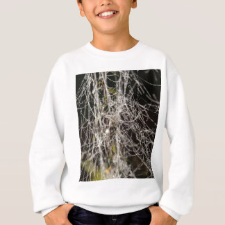 Spider webs with dew drops sweatshirt