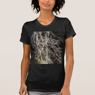 Spider webs with dew drops T-Shirt