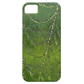 Spiders Web iPhone 5 Cover