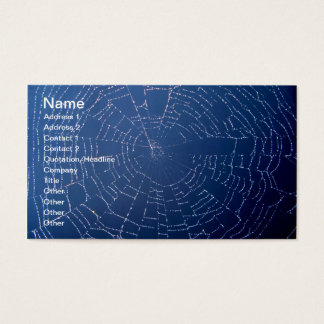 Spiderweb Business Card