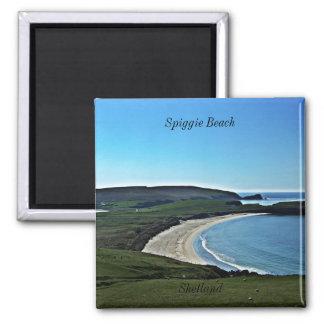 Spiggie Beach, Shetland Magnet