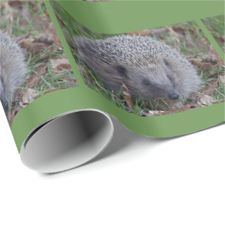 Spike Wrapping Paper