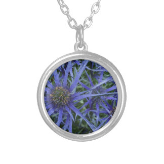 SPIKY BLUE SEA HOLLY FLOWER Silver Plated Necklace