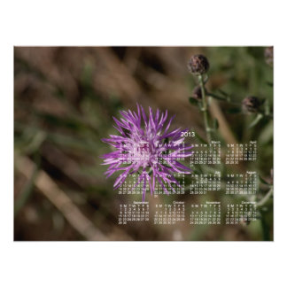 Spiky Clover 2013 Calendar Photo