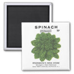 Spinach, Rodabush's Seed Store Refrigerator Magnet